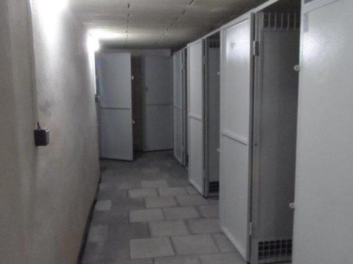 Rekonstrukce sklepních prostor v Olomouci, Tylova 2